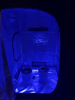 4x4 indoor hydroponic grow tent fully automated for Sale in Richardson, TX