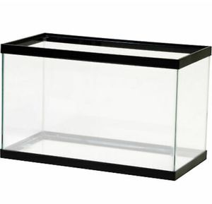 10 gallon fish tank comes with clear tote *any accessories needed ask, in perfect brand new condition(also ask about 5.5GL glow-fish tank) for Sale in Toms River, NJ