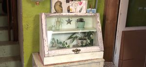 Antique/vintage Window display cabinet for Sale in Seattle, WA