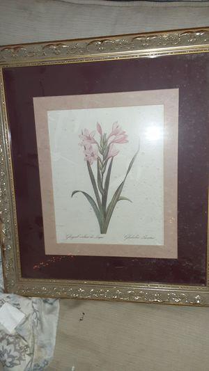 Cedar Creek collection flower portrait for Sale in St. Louis, MO