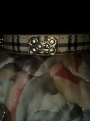 Brand New small dog collar for Sale in Las Vegas, NV