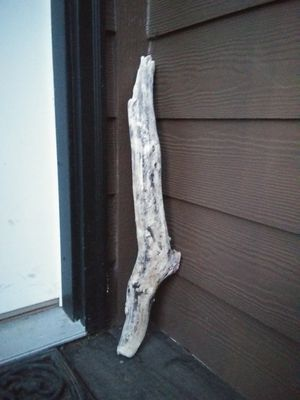 Driftwood for Sale in Burien, WA