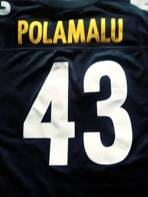 Troy Polamalu Jersey for Sale in Stockton, CA