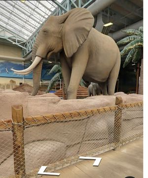 Kali Waterpark Sandusky Ohio (May Trade) for Sale in Marion, OH