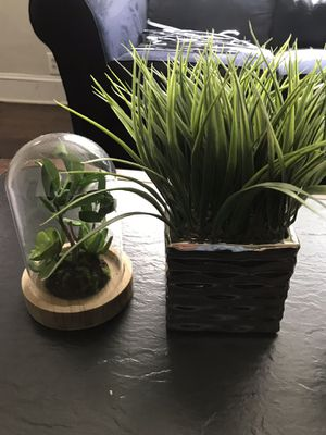 Fake plants for Sale in Atlanta, GA