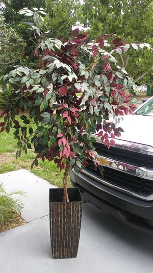6 ft fake tree/plant for Sale in Deltona, FL