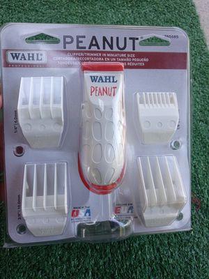 Peanut for Sale in Fontana, CA