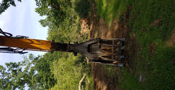Land clearing limpieza de terreno