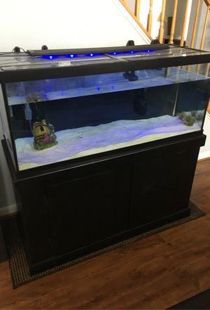 Fish tank for Sale in Bristow, VA