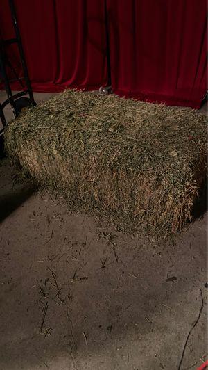 Hay for Sale in Pomona, CA