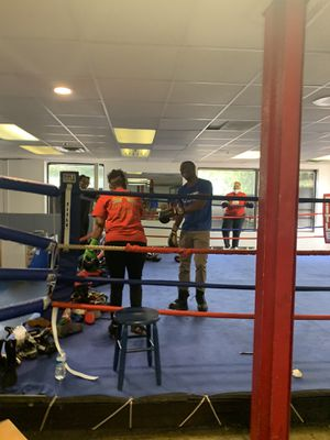 Professional Boxing Ring For Sale with speed bags for Sale in Indianapolis, IN