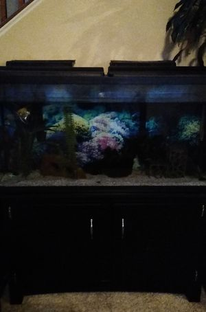 Nice & large fish tank! for Sale in Stafford, VA