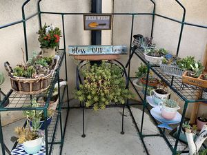 Fifi's Garden Boutique for Sale in Chula Vista, CA
