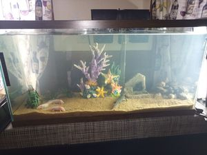 Fish tank for Sale in Woonsocket, RI