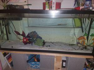 55 Gallon Fish Tank for Sale in Pasadena, MD