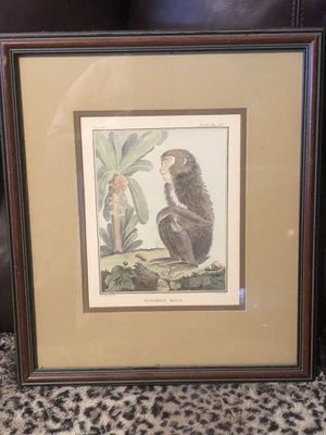 Monkey picture for Sale in Land O Lakes, FL