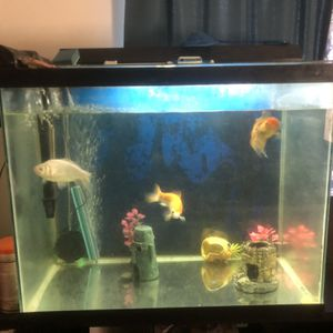 Tank With Supplies for Sale in Salt Lake City, UT