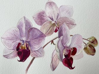 """Original watercolor Painting 8""""x10"""" Art Decor Orchid for Sale in Seattle,  WA"""