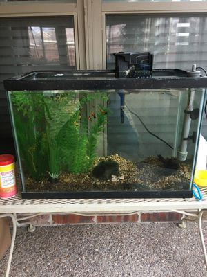 20 gallon aquarium tank with everything included for Sale in McKinney, TX