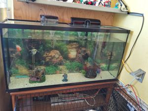 A big aquarium 80 gallons everything in side good condition for Sale in San Diego, CA