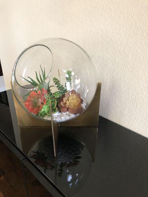 Extra large terrarium for Sale in Plano, TX