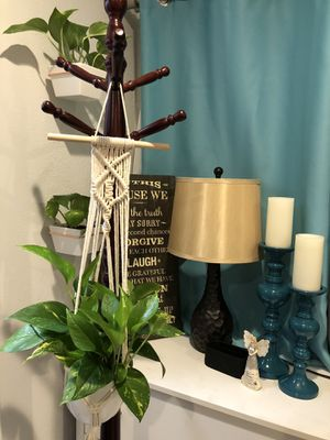 Indoor Plant Golden Pothos Tropical Houseplant in Brand New Macrame Hanger and Brand New White Pot for Sale in West Covina, CA