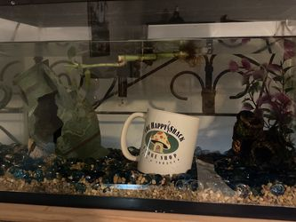Fish Tank 10 Gallon for Sale in Belmont,  NC