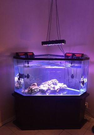 Aquarium Corner Pentagon - 60 Gallons. for Sale in Bell Gardens, CA