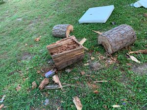 Free logs for Sale in Charlotte, NC