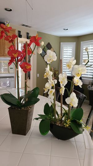 2 fake plants for Sale in Lake Elsinore, CA
