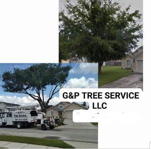 Tree trimming limpieza de arboles for Sale in Orlando, FL