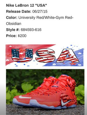 "LeBron Nike 12 ""USA"" for Sale in Tampa, FL"