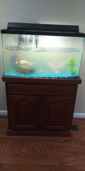 fish tank for Sale in Stafford Courthouse, VA
