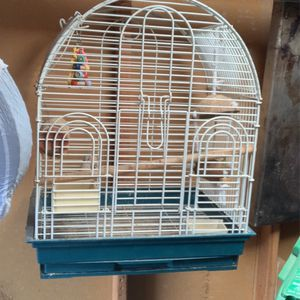 Big Bird Cage for Sale in Fairfield, CA