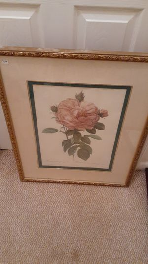 Beautiful Pink Rose Picture for Sale in Midlothian, VA