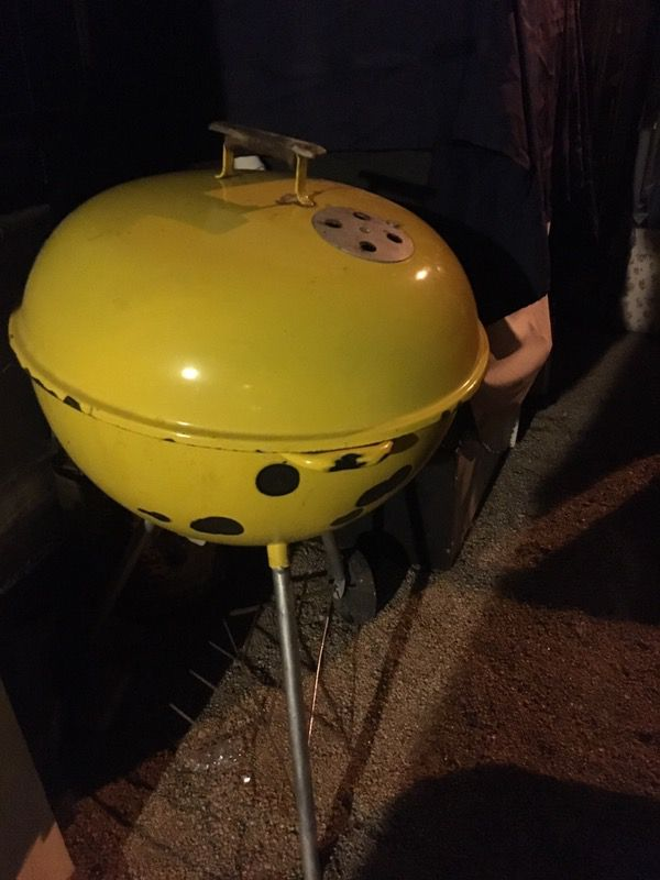 Barbecue grill fun and compact