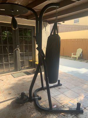 Everlast Punching Bag / speed bag Rack for Sale in Hialeah, FL