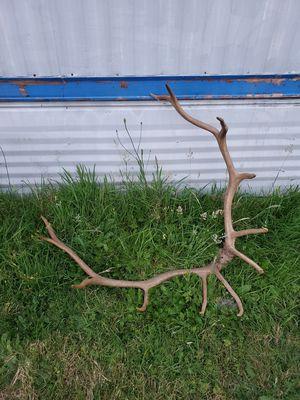 Antlers, bike, boat motor, fishing stuff for Sale in Lake Stevens, WA