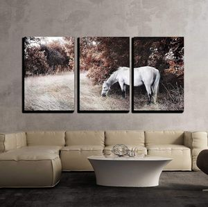 """3 Piece Canvas Wall Art - White Horse - Modern Home Decor Stretched and Framed Ready to Hang - 24""""x36""""x3 Panels for Sale in Westminster, CA"""