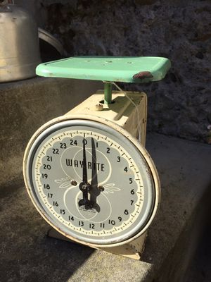 Vintage WAY RITE scales Green/Cream for Sale in Scappoose, OR