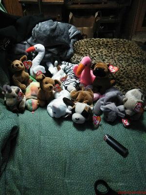 Ty Beanie Babies Lot for Sale in Neenah, WI