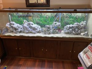 7 foot fish tank aquarium with glass tops, heater, rocks canister filters for Sale in North Chesterfield, VA