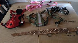 Dog collar and leashes for Sale in Albuquerque, NM