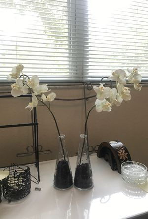 Fake Orchids/Plants for Sale in Union Park, FL
