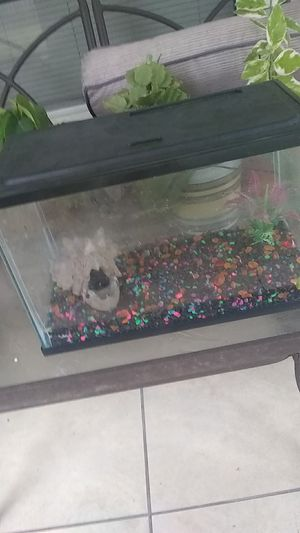Fish aquarium for Sale in Ocoee, FL