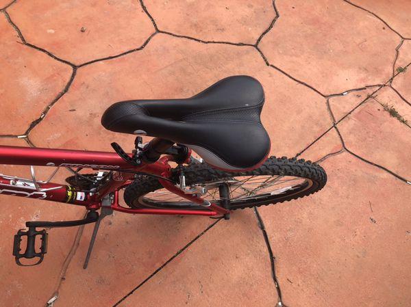 Giant bike (Rincon)