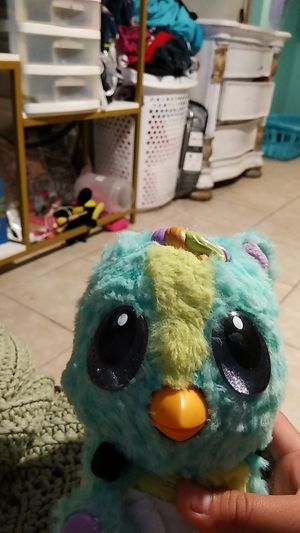 Hatchimal it used to be $50 now I'm saving I'm putting two$20 for Sale in Lamont, CA