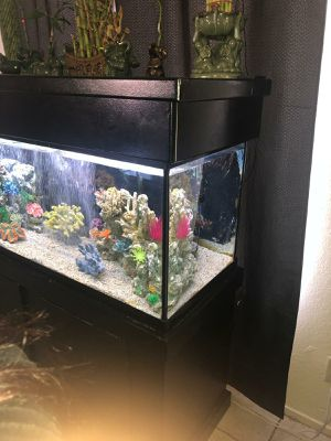 75 gallon fish tank for Sale in Las Vegas, NV