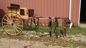 Beautiful Cart and Harness for Sale in Marengo, OH