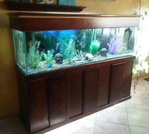 150 Gal Fish Tank for Sale in Phoenix, AZ